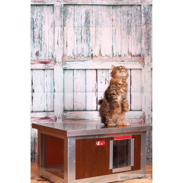 "[IF-W-HC1-W] INFRA HEATED Thermo WOODY Cat house ""CAT"" with Window insize (LxWxH:54x38x28cm)"