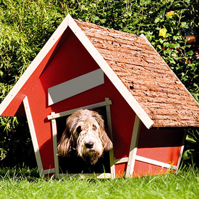 Obi kutyaház